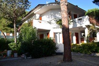 Wohnung Monte 1
