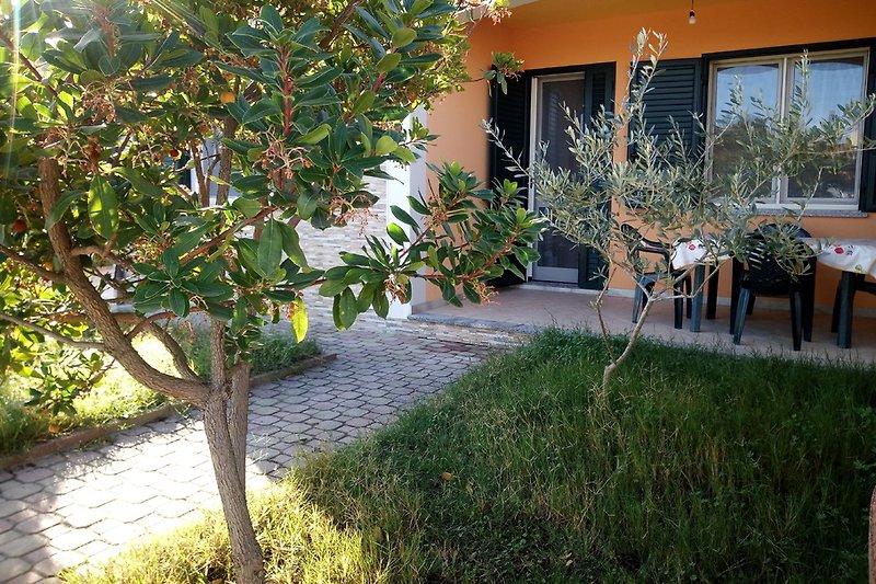 Haus arbutus in Iscra e Voes - Bild 2