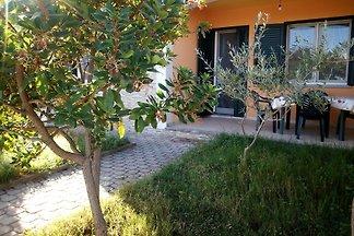 Corbezzoli holiday home