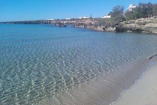 Nord Apulien Salento