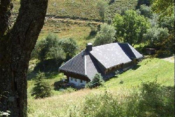 Mittelbachhof à Wieden - Image 1