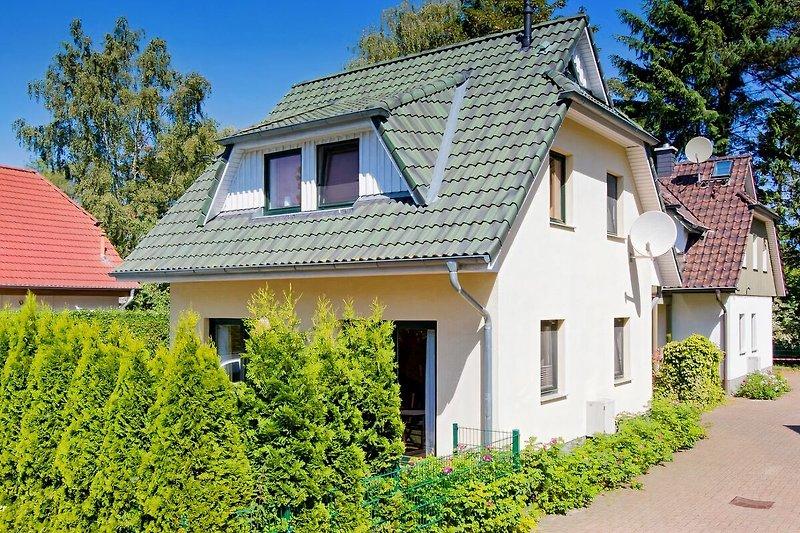 Ferienhaus Kranich: freistehendes Haus.