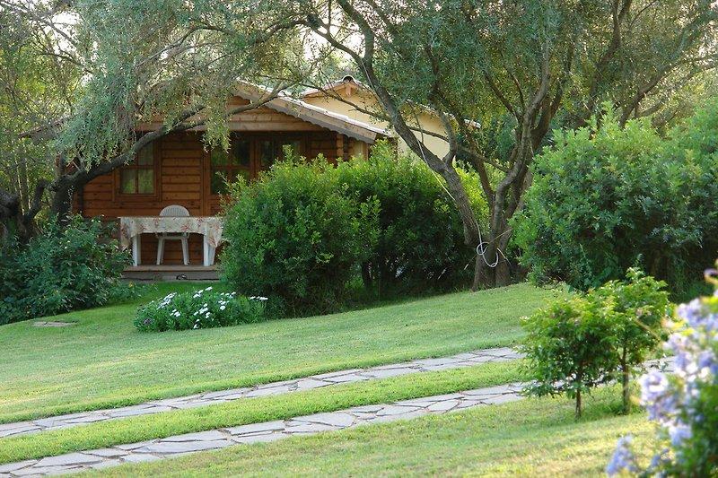 Chalet à Costa Smeralda à Arzachena - Image 2