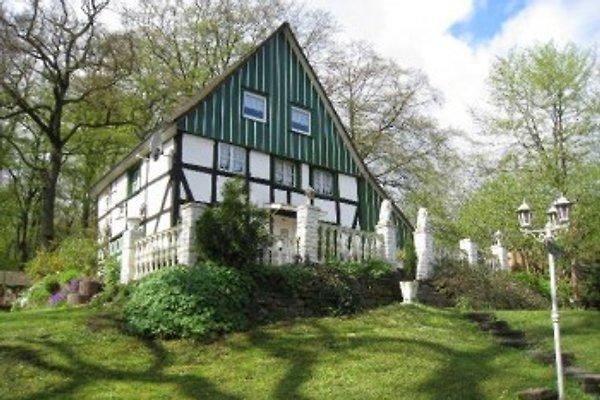Ferienhaus Mirjam im Sauerland in Dahl - Bild 1