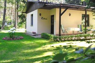 Kastavengrund - Ferienhaus Calluna
