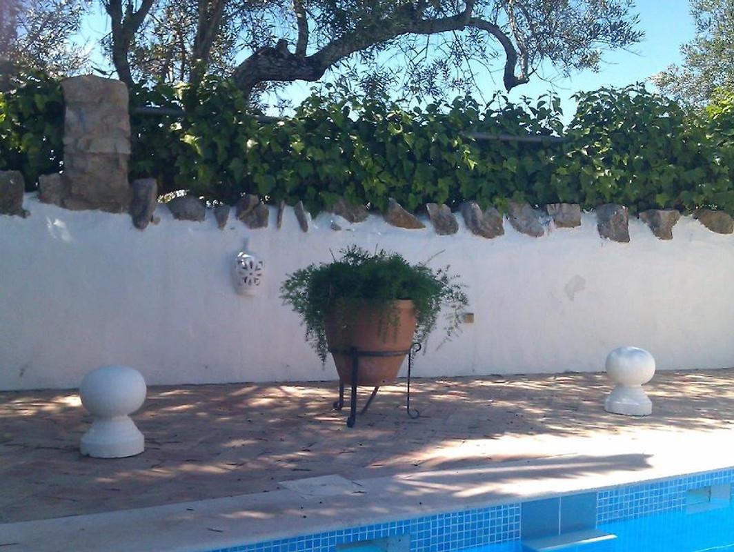 Casa das palmeiras maison de vacances santa barbara de for Prix piscine waterair barbara