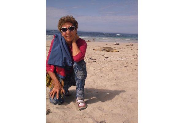 Mrs. R. Becerra gallardo