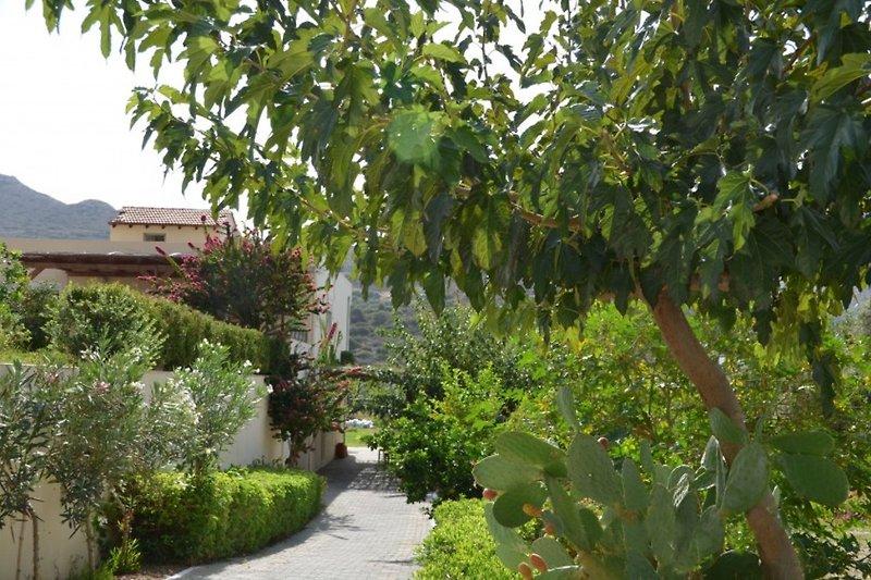 Outdoor Villa Marina