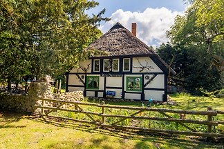 Holiday flat family holiday