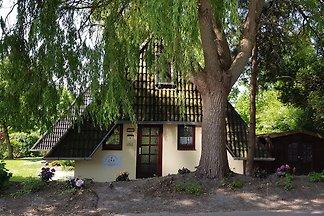 Nordseeferienhaus-Dorum