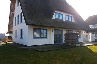 Seestern-Rehbergort