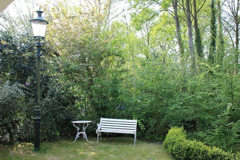 Grüner Garten vor dem Haus