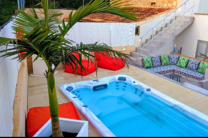 Swim Spa/Pool