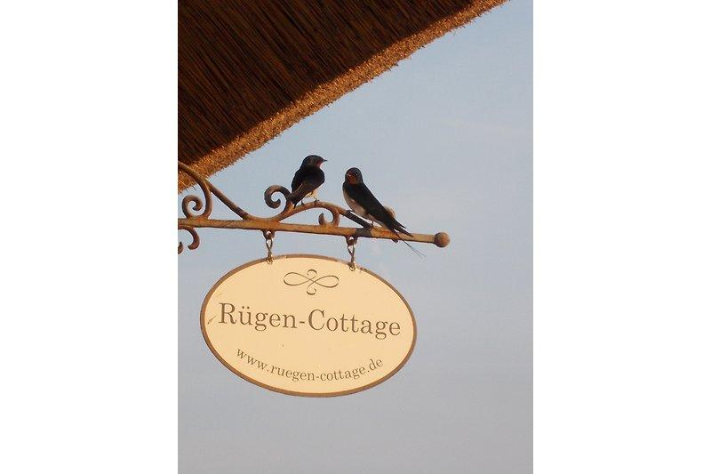 Das Rügen Cottage