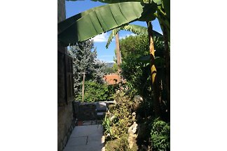Appartement idyllique avec jardin
