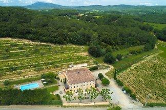 Schöne Villa im Weinberg mit Pool