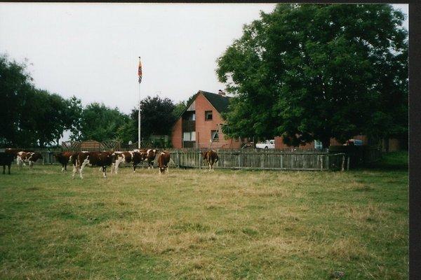 Haus Ilka mit DSL-Anschluß in Galmsbüll - immagine 1