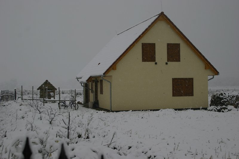 Villa Dalski im winter