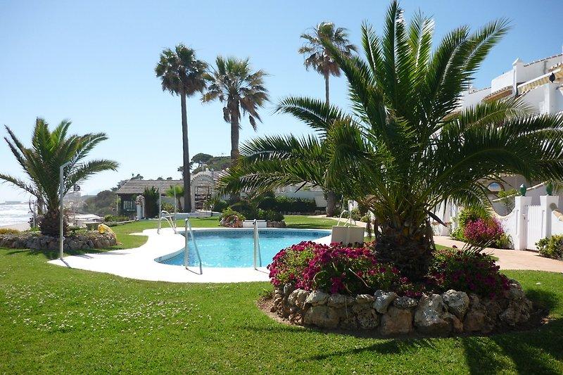 Garten Pool Apartments Meer