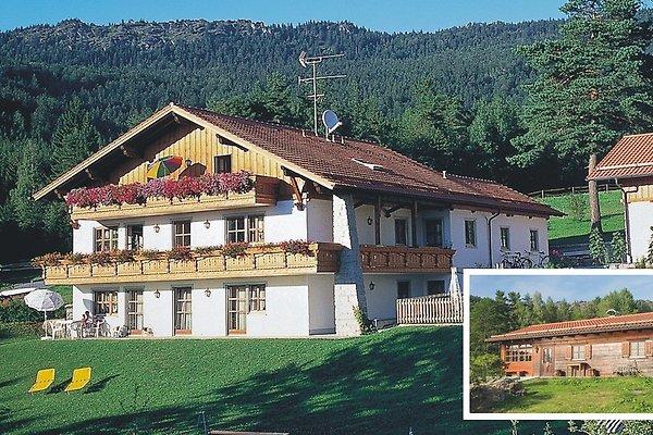 """<span style=""""font-size:smaller;"""">Azienda Ferienhaus Geiger</span><br> Sig. J. Geiger"""