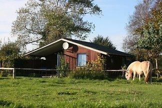 Ferienhaus auf dem Bauernhof