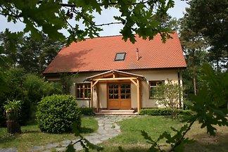 Ostseehaus-Strandkiefer