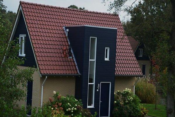 Lusso Casa per 8 persone con sauna in Westerbork - immagine 1