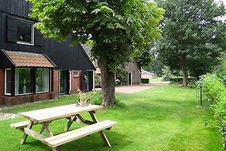 Ferienhaus Suytvelde