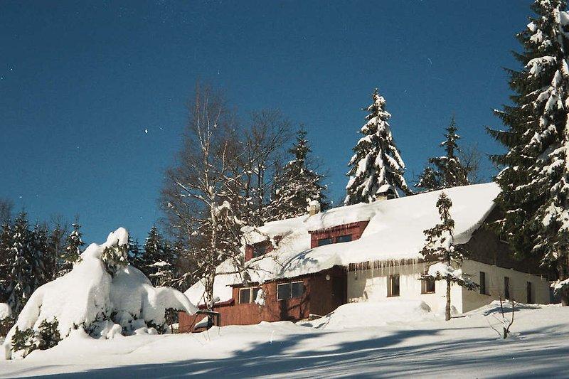 Winteransicht mit Garten