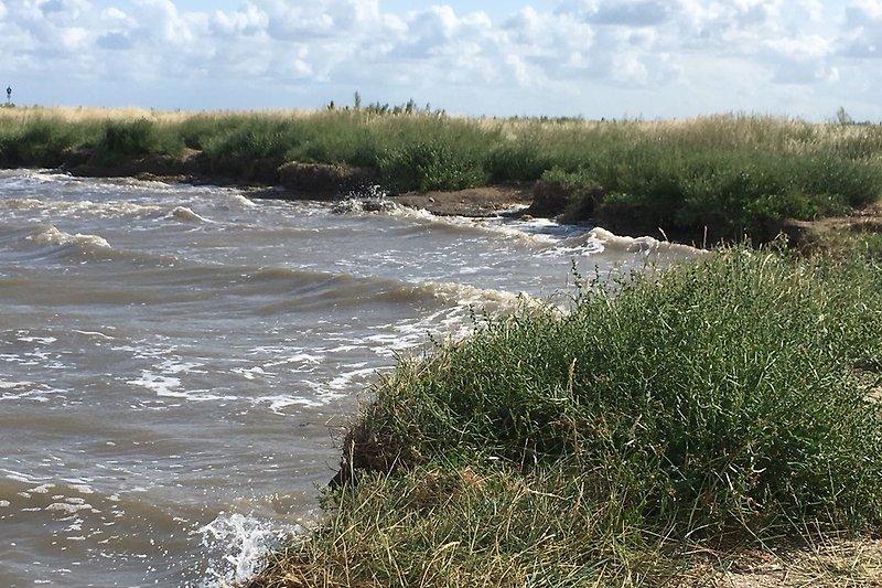 Badestelle am Wattenmeer bei Flut