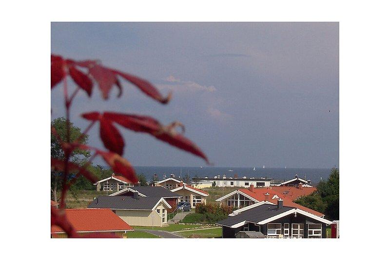 Blick aus der Wohnung zum Meer