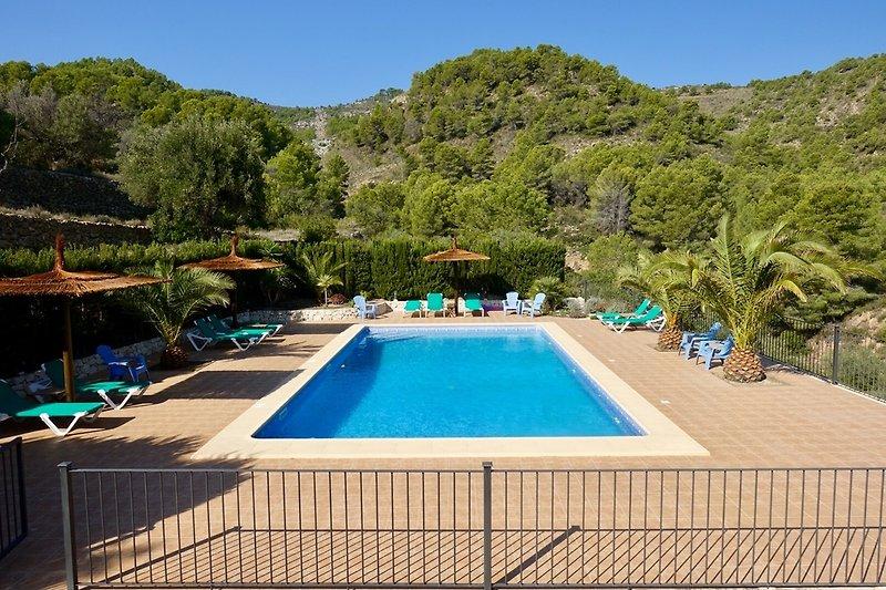 Der Swimmingpool und die Umgebung. 12 * 6 Meter und von 1 bis 2 Meter tief
