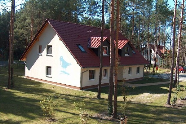 Familienpark Senftenberger See en Großkoschen - imágen 1