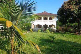 Swahili Oasis