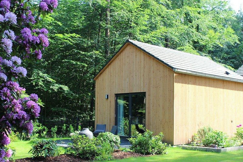 Annas Haus im Mai