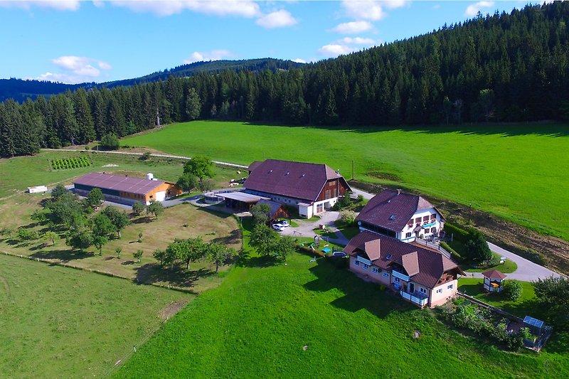 Luftfoto Hof