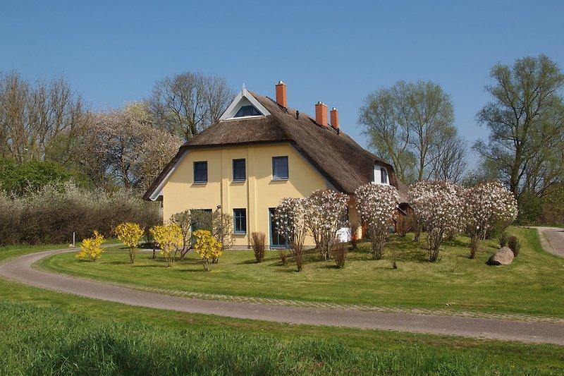 Das Haus mit Grundstück