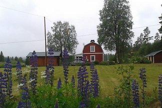 Ferienhaus in Västernorrland