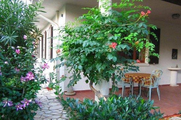 villa christine garda gardasee ferienwohnung in garda mieten. Black Bedroom Furniture Sets. Home Design Ideas
