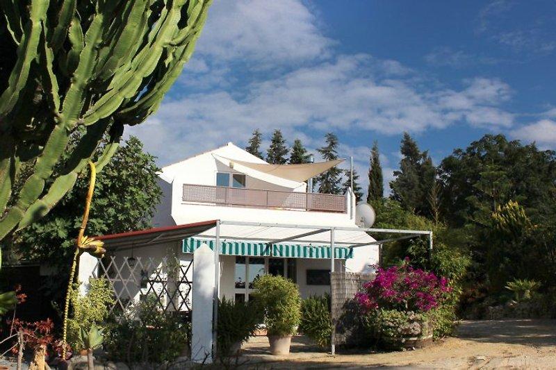 Casa Jacaranda à Conil de la Frontera - Image 2
