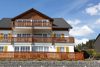 Comfortable appartment near Winterberg - 71