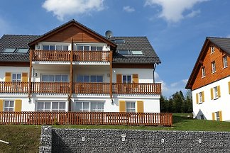Comfortable appartment near Winterberg - 94