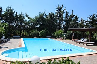EMERALD HOME POOL SALT WATER