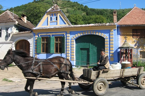 Holiday house - Galeş, Sibiu in Gales - Bild 1