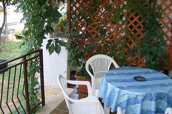 Haus Folo Apartment Nr.02 in Tar-Vabriga - immagine 1