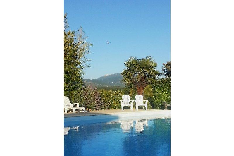 Pool mit Mont Ventoux
