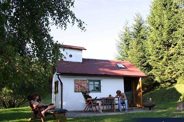 Jagdhütte Schnepfenloch en Schleusegrund - imágen 1
