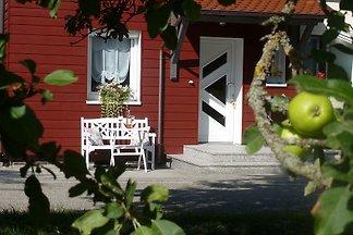 """Ferienhaus """"Slända"""""""