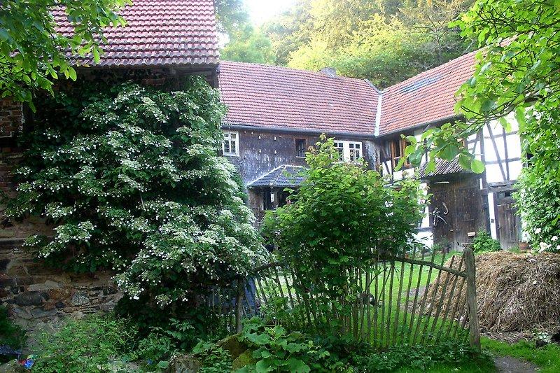 Sommergrüne Mühle
