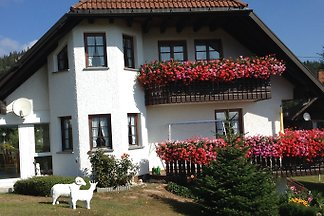 Haus Schupp